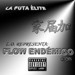 FLOW ENDÉMICO - FRONT COVER